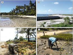 effects of sea level rise on pacific