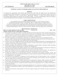 Resume Internal Auditor Resume