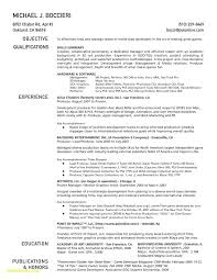Luxury Beginner Resume Template Free Download Entry Level Resume