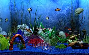 animated aquarium wallpaper for windows 7 free.  Free Animated Aquarium Wallpaper For Windows 7 Free With L