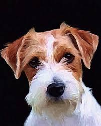 pet paintings best 10 pet portraits ideas on dog artwork pug image