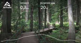 <b>Hemlock Grove</b> Boardwalk - British Columbia, Canada | AllTrails
