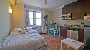 Exceptional One Bedroom Apartment Chicago Also Rustic Designs