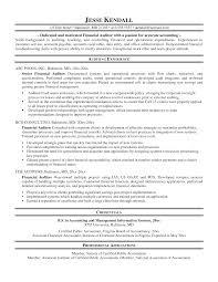 Auditor Resume Sample Singapore