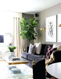black sofas living room design beautiful black couch living room ideas ideas about black sofa decor
