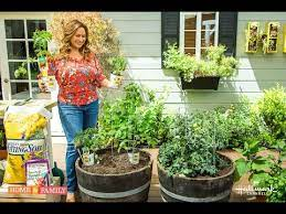 small space vegetable garden plant