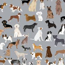 dog pictures to print.  Pictures Dogs Grey Fabric Cute Dog Design Best Breed  Print Throughout Dog Pictures To Print T