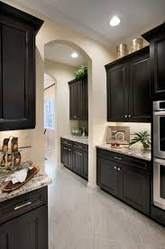 Modren Dark Kitchen Cabinets Colors Design Ideas In