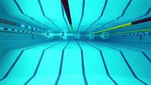 swimming pool lane lines background. Underwater Picture Of The Lanes A Swimming Pool; Sport Concept. Pool With Blue Water, Swimmers On Background Stock Footage Video Lane Lines