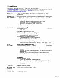 Resume Templates Word Download Persuasive Essay On Electoral Colleges Papers Free Resume 88