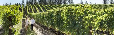 See more ideas about kelowna, okanagan valley, winery. Kelowna Lake Country Wine Region Of British Columbia Win Bc