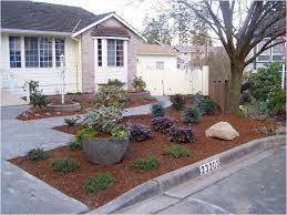lawn front yard landscaping