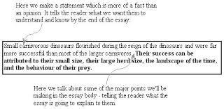 Explanatory Essay Format Example Of Explanatory Essay Coachfederation