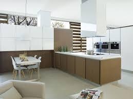 Porcelanosa Kitchen Cabinets Contemporary Kitchen Stainless Steel Walnut Oak G680