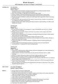 Vice President Resume Samples Vp Finance Resume Samples Velvet Jobs