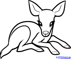 How To Draw Cute Baby Animals Coloring Pages Baby Deer Coloring Cute