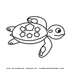 Small Picture Cute Baby Sea Turtle free coloring page Cute Baby Sea Turtle