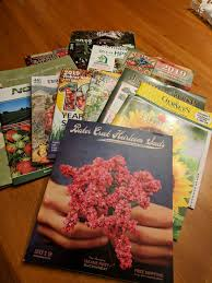 my mail box was full during the month of december as the mail person stuffed it with the usual mail holiday greetings ads and seed catalogs