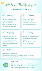14 Month Old Baby Milestones Chart Child Development Stages Chart New 84 Best Child Development