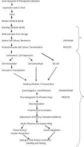 qbd implementation in biotechnological product development studies figure 2