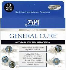 Fish Medication Chart Fish Medication Pets Bond