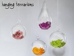 image gallery hanging terrariums