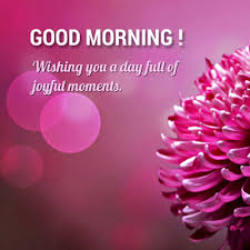 Special Good Morning Quotes Best of Morning Wishes For Someone Special Good Morning Images Quotes