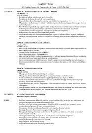 Senior Category Manager Resume Samples Velvet Jobs
