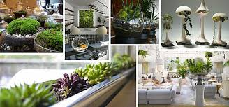 Small Picture Indoor Gardening Ideas to Beautify Your Space