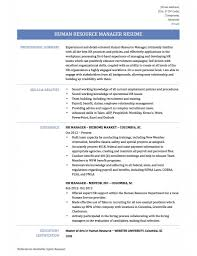 Recruitment Manager Resume Sourcing Consultant Sample Resume