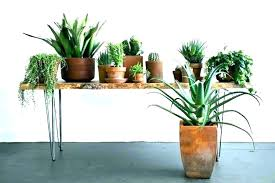 full size of plant pots nz large outdoor for indoor plants planters com intended ceramic