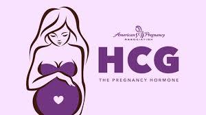 Hcg Blood Test Levels Chart Human Chorionic Gonadotropin Hcg Hcg Levels
