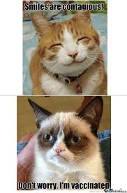 grumpy cat smiling is contagious. Fine Contagious When Grumpy Cat And Smile Meets Inside Smiling Is Contagious Y