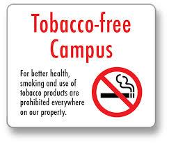 essay arguing that cus smoking bans