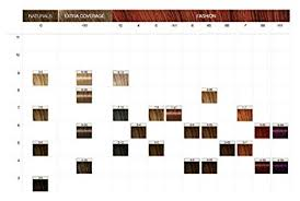 Schwarzkopf Professional Igora Hair Color 3 0 Dark Natural Brown 2 1 Ounce