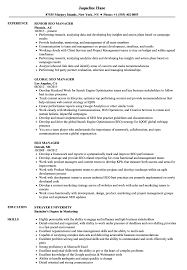 Seo Resume Examples SEO Manager Resume Samples Velvet Jobs 13