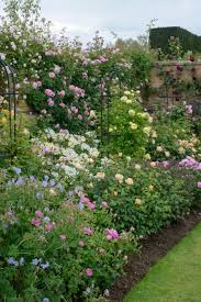 Small Picture The 25 best Rose garden design ideas on Pinterest Backyard
