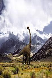 dinosaur hd wallpapers 4k wallpapers