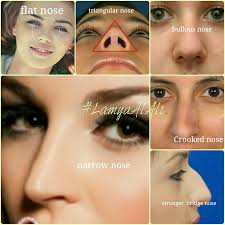 hi las so one more time i want talking more explanation how to know about the diffe your nose how you doing to highlight and contour if you have