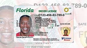 Art Florida Id Card Residents - Gallery Drawings Gallery