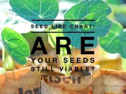 Seed Life Chart How Long Will Seeds Last Gardening Channel