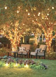 garden rope lighting ideas enough