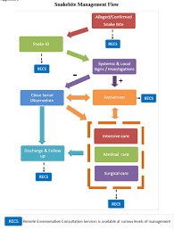 Snake Bite Management Flow Chart Malaysian Society On Toxinology Recs
