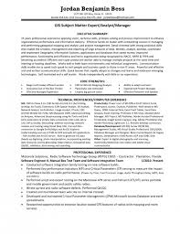 Best Photos Of Pm Resume Executive Summary Project Management Subject  Matter Expert Resume