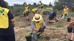 Local Church Volunteers Participate In Community Service Projects