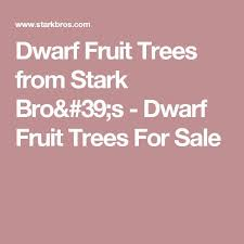 Contender Peach  Peach Trees  Stark Brou0027sFull Size Fruit Trees For Sale