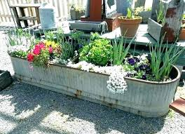 patio patio planter ideas flower planting large best planters outside for summer