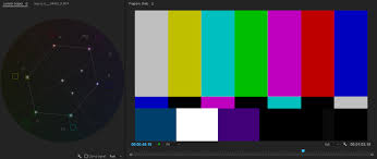 Skin Scope Color Chart How To Use And Read The Four Primary Video Scopes