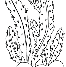 Coloring Pages For Science Plant Coloring Pages Science Site With