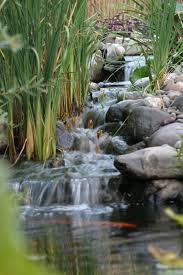 Terrace and Garden: Waterfall Garden For Koi Pond - Waterfall Ideas